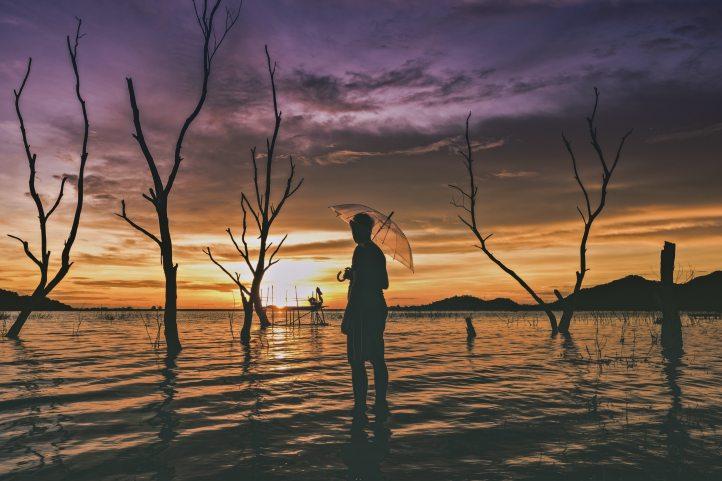 alone-backlit-beach-532358